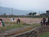 2009跨年宜蘭行:DSC01159.JPG