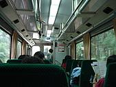 2009阿里山櫻花季:DSC01386.jpg