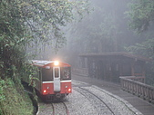 2009阿里山櫻花季:DSC01413.jpg