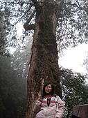 2009阿里山櫻花季:DSC01418.jpg