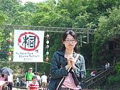 失望的桐花祭:DSC01497.JPG