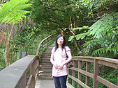 失望的桐花祭:DSC01516.JPG