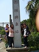 失望的桐花祭:DSC01258.JPG