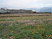 2009跨年宜蘭行:DSC01162.JPG
