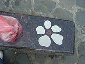 失望的桐花祭:DSC01532.JPG