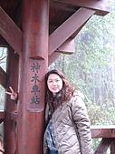 2009阿里山櫻花季:DSC01422.jpg