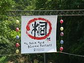 失望的桐花祭:DSC01264.JPG