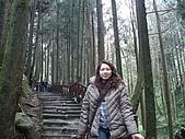 2009阿里山櫻花季:DSC01403.jpg
