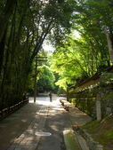 日本京都自助20150615(七)–祇王寺與清涼寺:鳥居本街景
