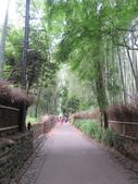 日本京都自助20150615(二)–嵐山竹林小徑、野宮神社:IMG_0601.JPG