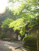 日本京都自助20150615(七)–祇王寺與清涼寺:檀林寺