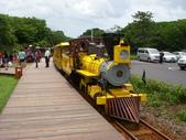 韓國濟州島20110701(二)–EcoLand英式小火車:EcoLand