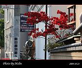 2009 日本立山黑部 合掌村 Day4:s_IMG_5056.jpg
