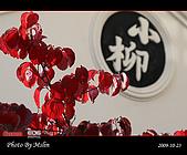 2009 日本立山黑部 合掌村 Day4:s_IMG_5057.jpg