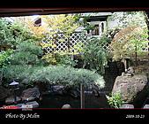 2009 日本立山黑部 合掌村 Day4:s_IMG_5059.jpg