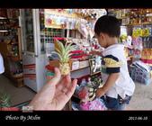 2013/06/10 沖繩 OKINAWA Day 6:s_DSC05115.jpg