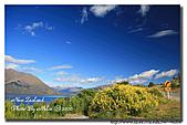 深白色夏戀Ⅴ 紐西蘭 New Zealand Day 7:s_IMG_4161