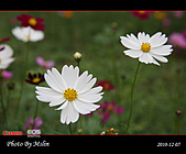 2010 Blog:s_IMG_8769.jpg
