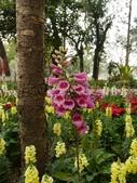 2012 台南公園 百花節 :P1290713.JPG
