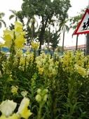2012 台南公園 百花節 :P1290780.JPG