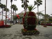 2012 台南公園 百花節 :P1290817.JPG