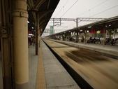 2012 台南公園 百花節 :P1290836.JPG