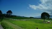 台東初鹿牧場:P1090899.JPG