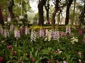 2012 台南公園 百花節 :P1290082.JPG
