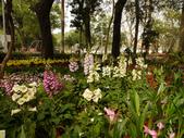 2012 台南公園 百花節 :P1290102.JPG