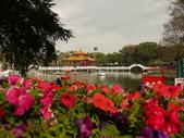 2012 台南公園 百花節 :P1290118.JPG
