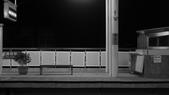 黑白集:P1100760.JPG