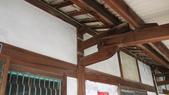 嘉義2011花海:P1210234.JPG