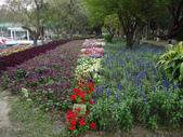 2012 台南公園 百花節 :P1290481.JPG
