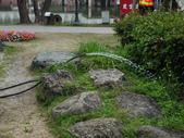 2012 台南公園 百花節 :P1290561.JPG