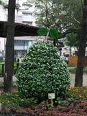 2012 台南公園 百花節 :P1290622.JPG