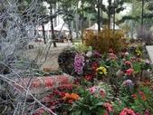 2012 台南公園 百花節 :P1290637.JPG