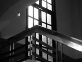 黑白集:P1010983.JPG