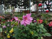 2012 台南公園 百花節 :P1290655.JPG