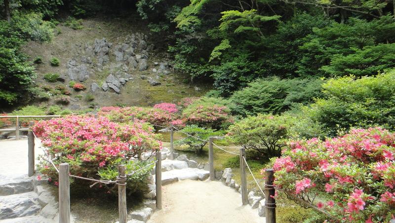 戀戀京都 (01.06-05.06.2015) :142.JPG