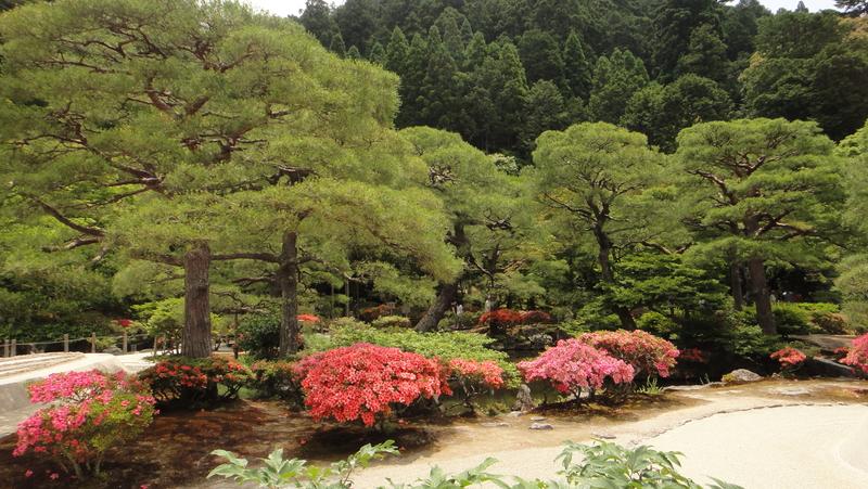 戀戀京都 (01.06-05.06.2015) :104.JPG