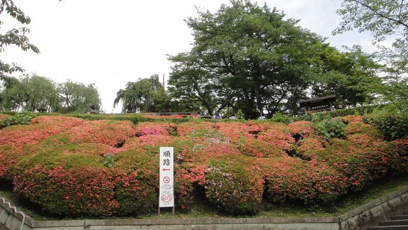 戀戀京都 (01.06-05.06.2015) :012.JPG