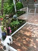 祕密花園咖啡民宿:庭院.JPG