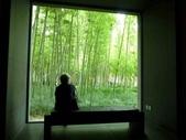 蘇州博物館-貝律銘 + 杭州烏鎮:1333134540.jpg