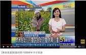 東森氣象~淑麗借分享播出記錄:東森氣象報導(畫面擷取自 youtube)