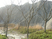 張三的歌:台南龍崎景點 ♡ 牛埔農塘