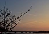 張三的歌:安平湖濱水鳥公園