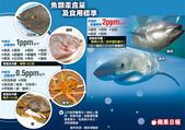 日誌用相簿:魚類汞含量及食用標準