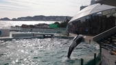 鴨川シーワールド:鴨川海洋世界21.20151111.jpg