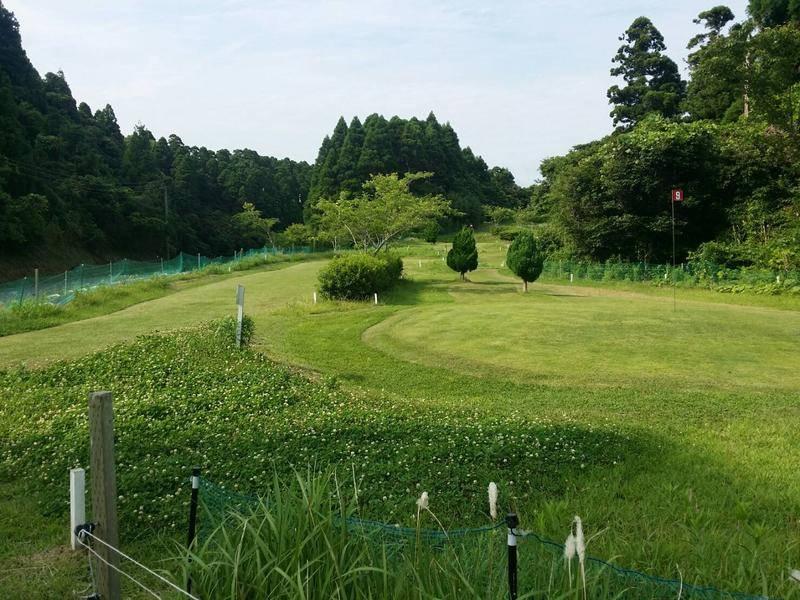 2017 公園高爾夫球:公園高爾夫球5.jpg