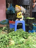 生活筆記:傳統市場販售海鮮水產的阿喵-12.jpg
